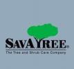 Climber-General Tree Care