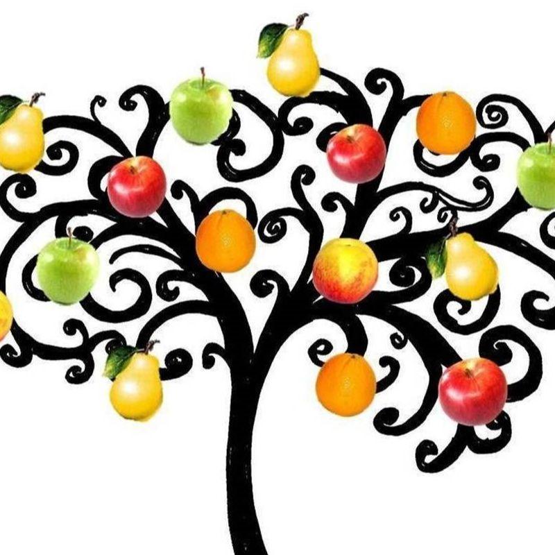 Funny Farm Fruit Tree Care