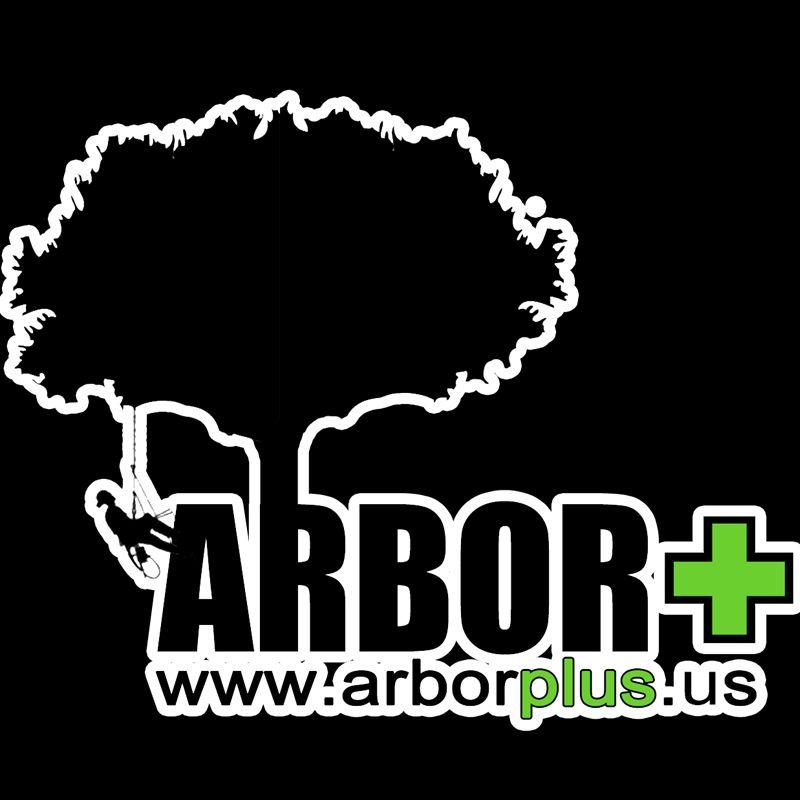 ARBOR+