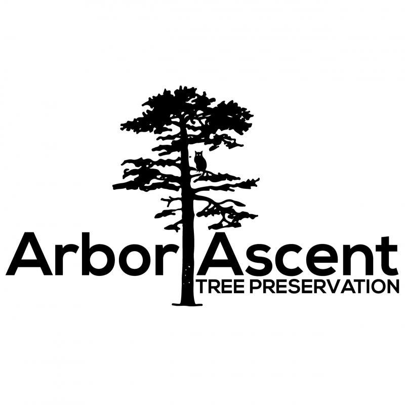 Arbor Ascent